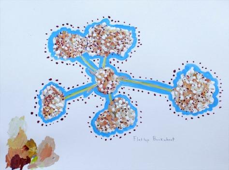 flattop buckwheat sketch 72