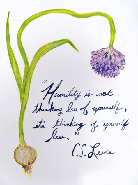 humility alliums 72